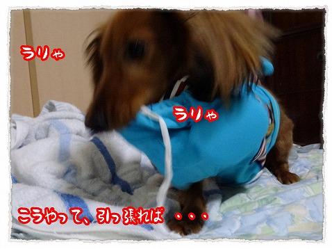 2013_6_23_2.jpg