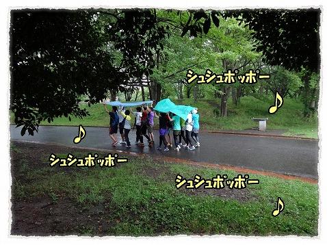 2013_6_25_5.jpg
