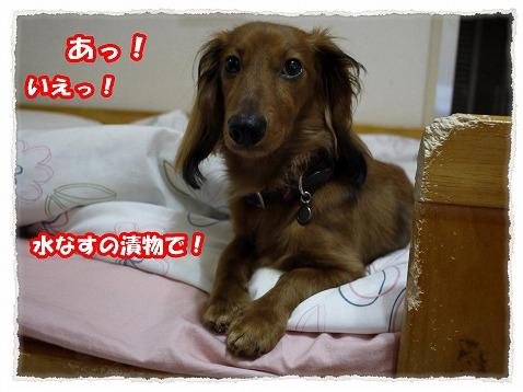 2013_6_26_2.jpg