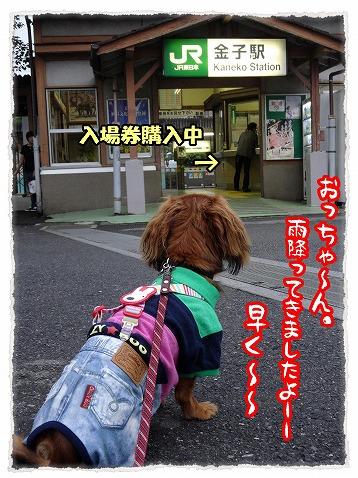 2013_6_27_2.jpg