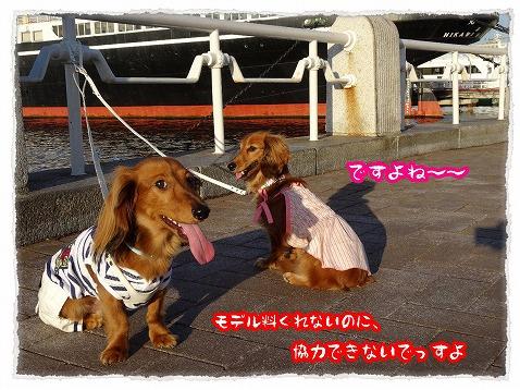 2013_6_30_2.jpg