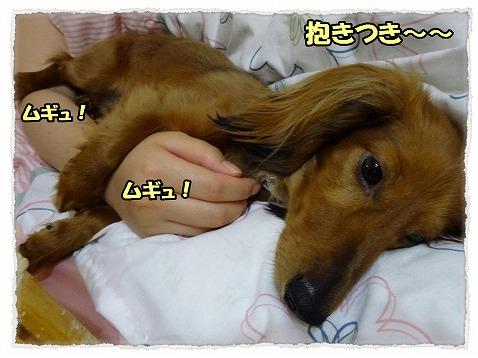 2013_6_4_1.jpg