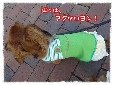 2013_7_14_3.jpg