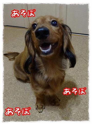2013_7_19_2.jpg