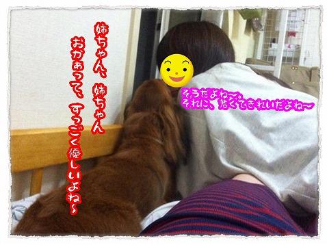 2013_7_24_2.jpg