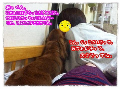2013_7_24_3.jpg