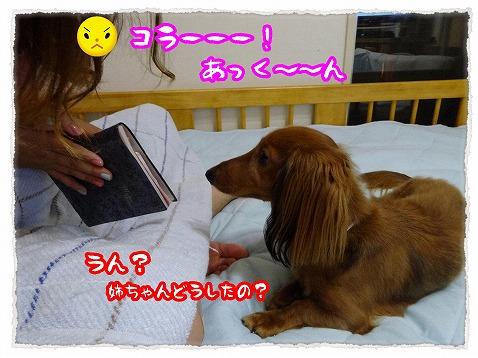 2013_7_27_1.jpg