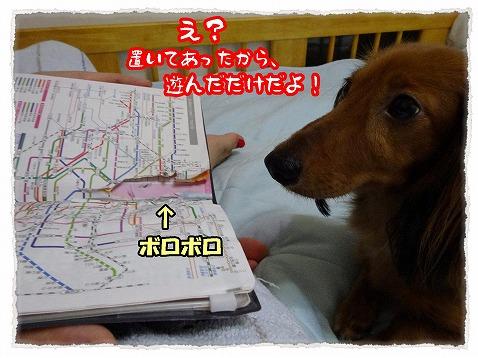 2013_7_27_2.jpg