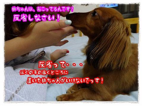 2013_7_27_4.jpg