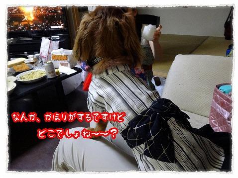 2013_7_30_1.jpg