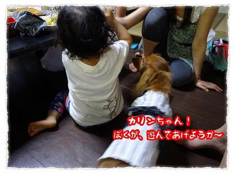 2013_7_31_2.jpg