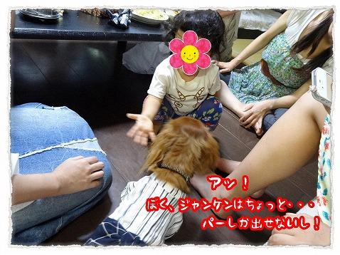 2013_7_31_3.jpg