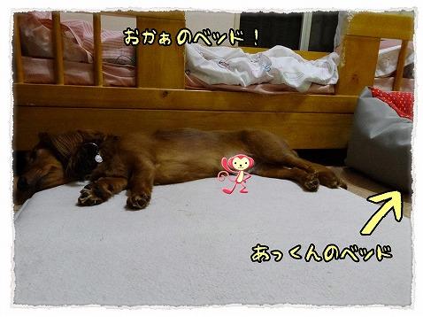 2013_7_3_2.jpg