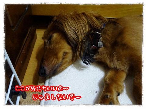 2013_7_3_3.jpg