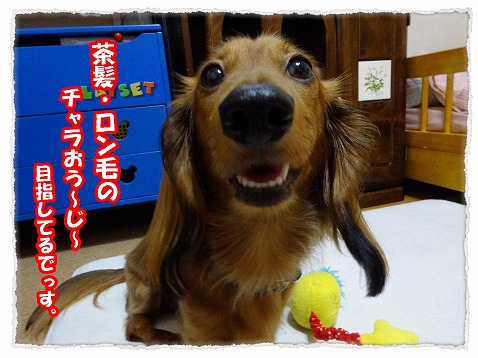 2013_7_4_4.jpg