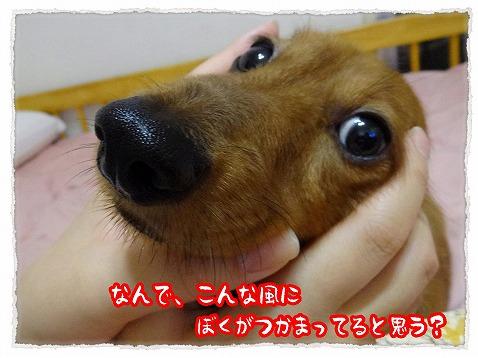 2013_7_8_1.jpg