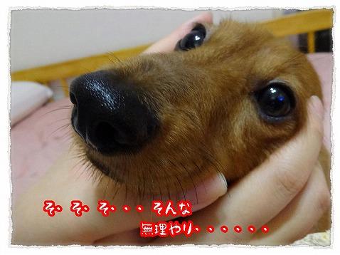 2013_7_8_2.jpg