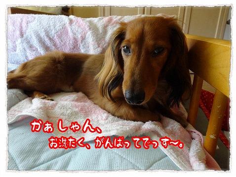 2013_8_18_1.jpg