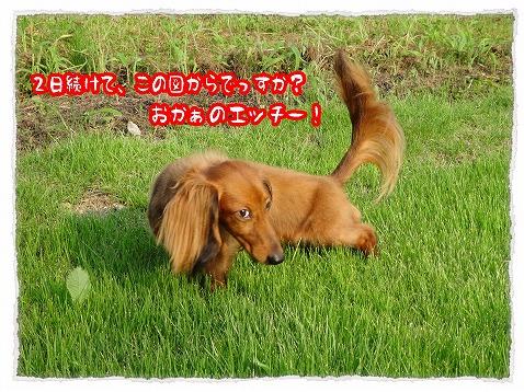 2013_8_20_1.jpg