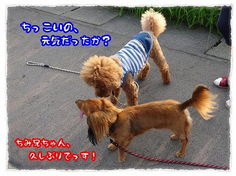 2013_8_20_2.jpg
