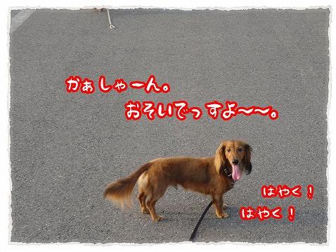 2013_8_20_5.jpg