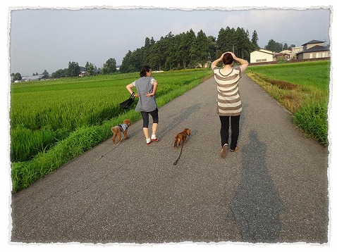 2013_8_20_7.jpg