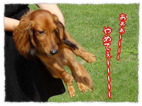 2013_8_23_2.jpg