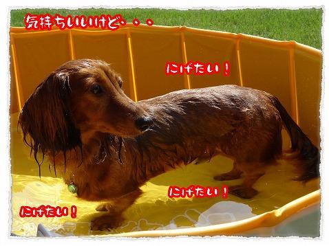 2013_8_23_4.jpg
