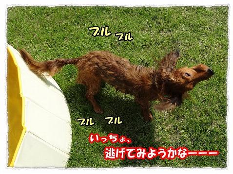2013_8_27_2.jpg