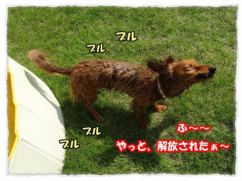 2013_8_27_3.jpg