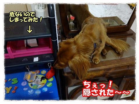 2013_8_2_3.jpg