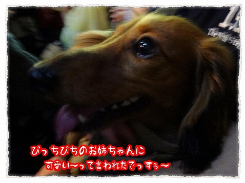 2013_8_31_4.jpg