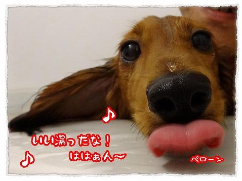 2013_8_7_2.jpg
