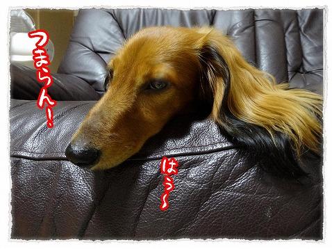 2013_9_10_3.jpg