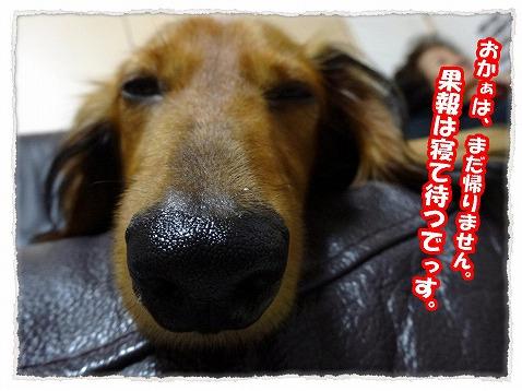 2013_9_11_1.jpg