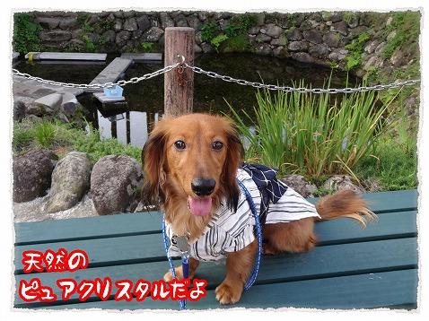 2013_9_13_2.jpg