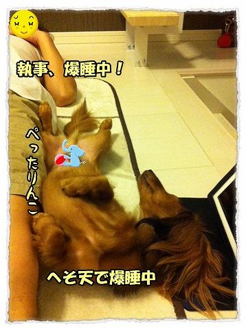 2013_9_17_1.jpg