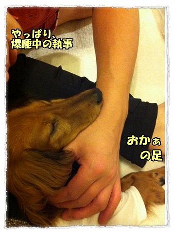 2013_9_17_2.jpg