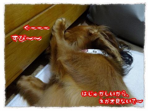 2013_9_18_2.jpg