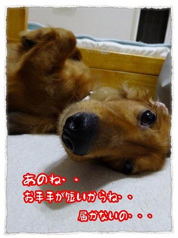 2013_9_18_3.jpg