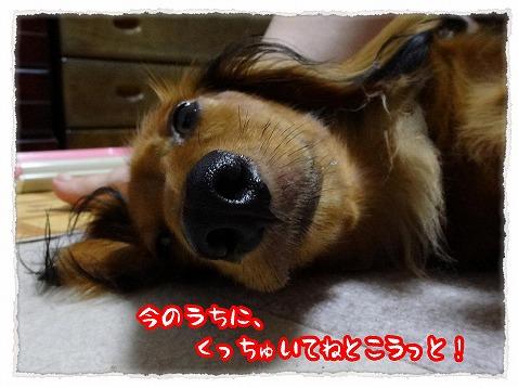 2013_9_19_2.jpg
