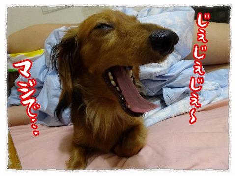 2013_9_21_1.jpg