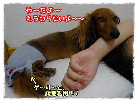 2013_9_21_2.jpg