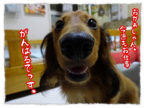 2013_9_23_1.jpg