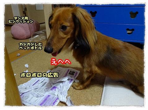 2013_9_25_2.jpg