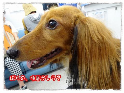 2013_9_30_2.jpg