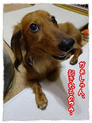 2013_9_3_1.jpg