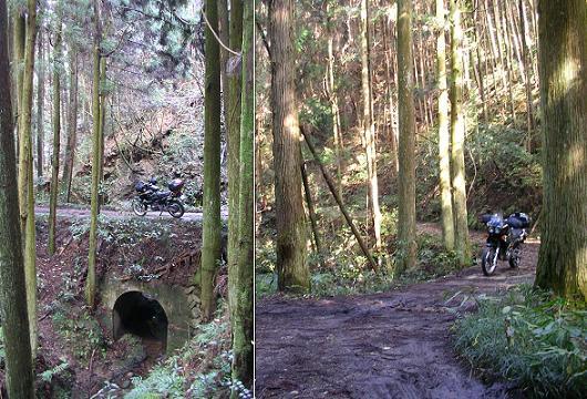 小さい川のトンネル発見!b