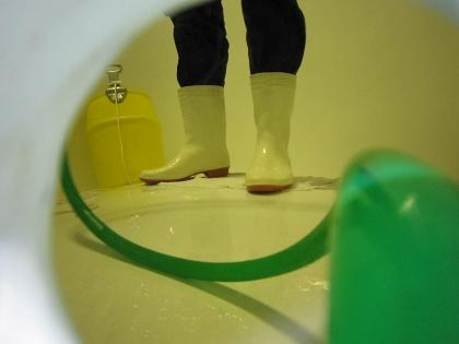 タンク掃除6