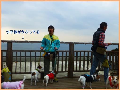 th_P1120627.jpg